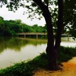 Mount Vernon Trail