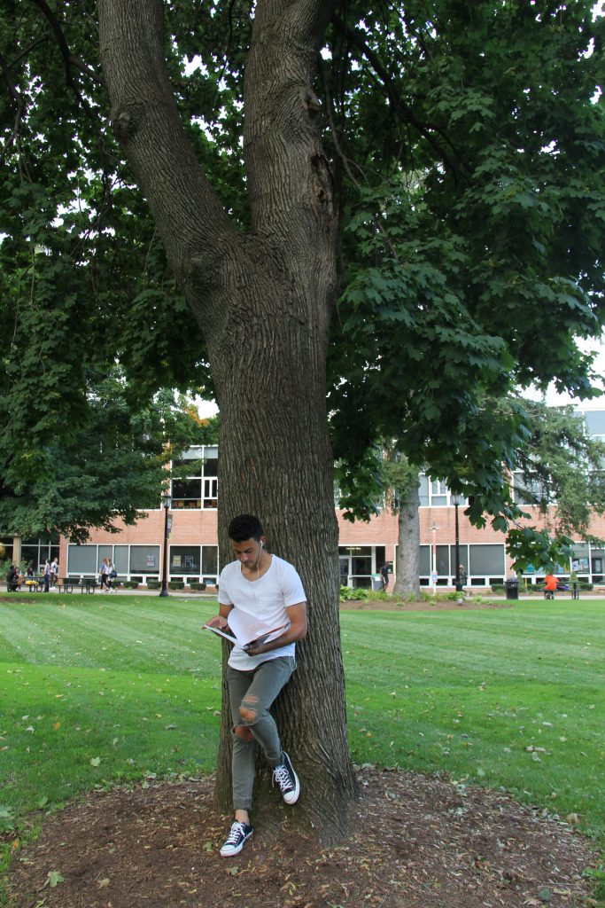 Male student leaning on tree on Saint Rose campus green