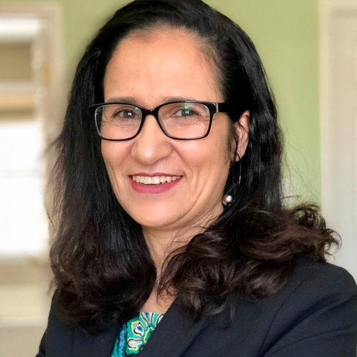Amina Eladdadi, associate professor of mathematics at Saint Rose