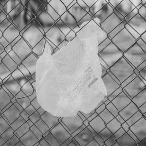 Plastic bag caught on a fence